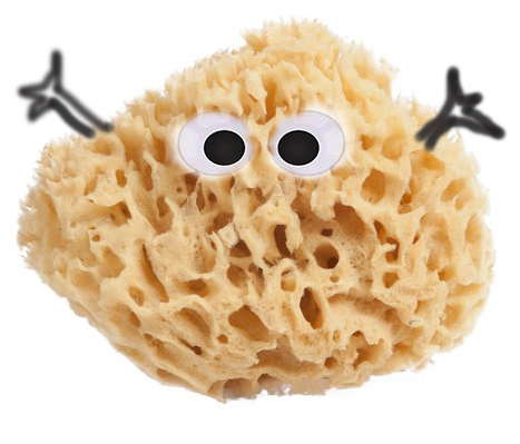 natural_sea_sponge-500 copy.jpg